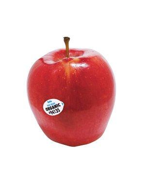 organic-lifestyle-apple-food-tech