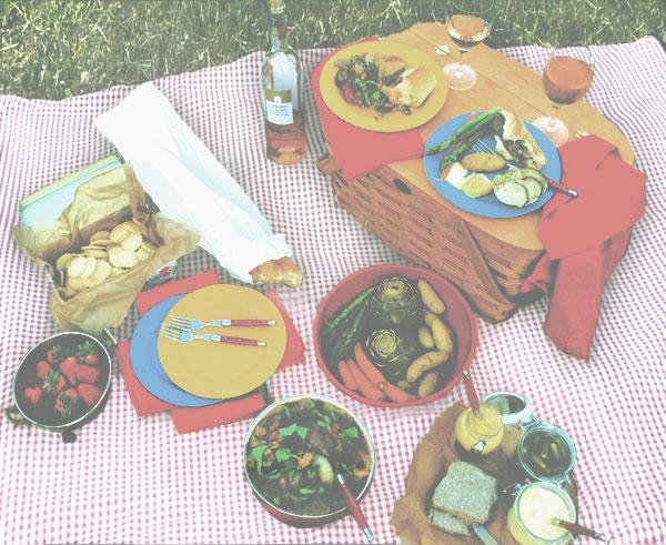 camp-baby-picnic-blanket
